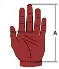 Hand Length